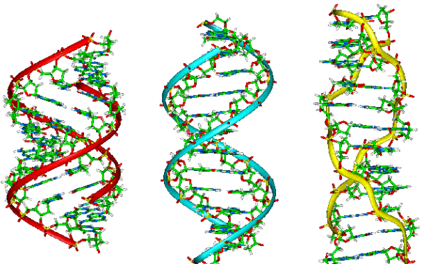 dna-image-blog